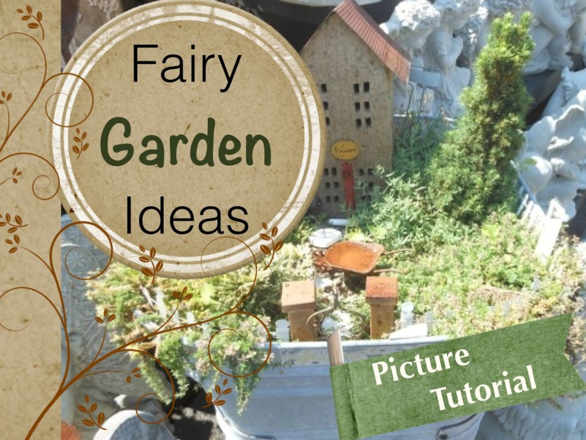 Miniature fairy gardens or enchanted gardens are a fun and creative way to add whimsical container gardening to your home or patio. See a variety of pictures and ideas for creating your own magical fairy garden.