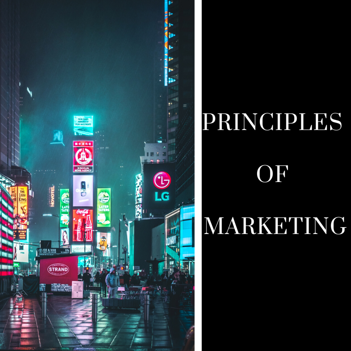 Principles of Marketing—Buyer Behavior