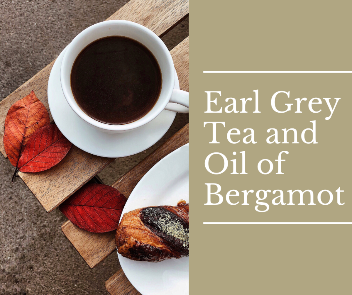 Earl Grey Tea and Oil of Bergamot From Calabrian Oranges