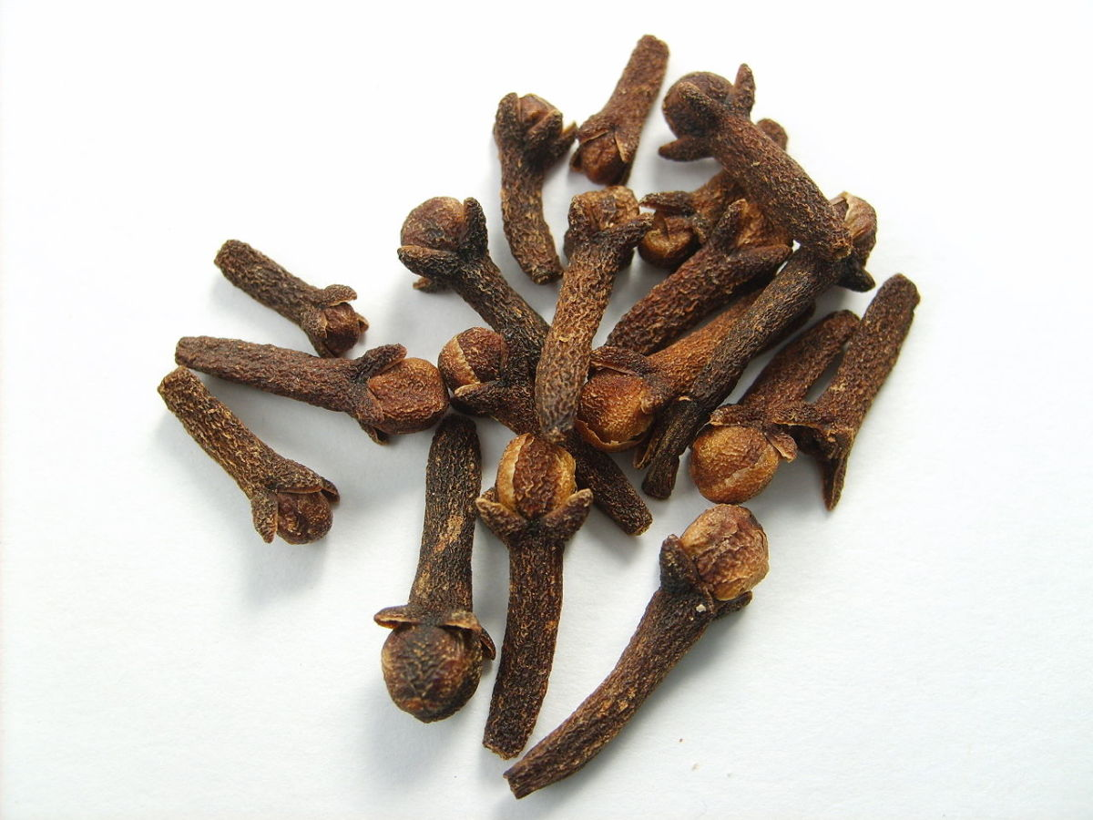 Cloves as they appear before being ground
