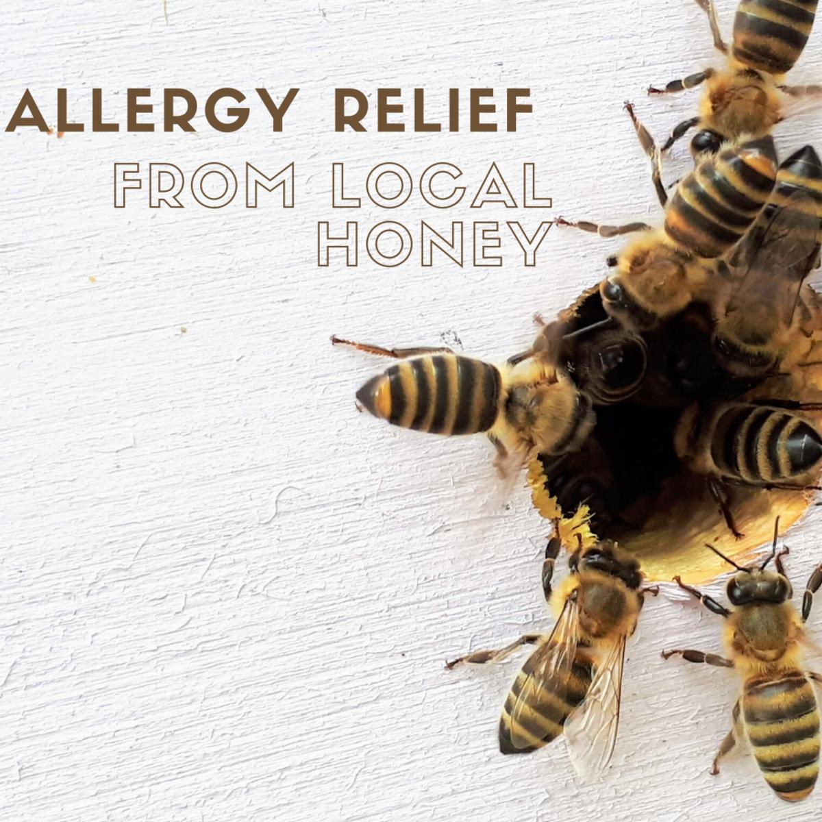 Bad allergies? Consider local honey.