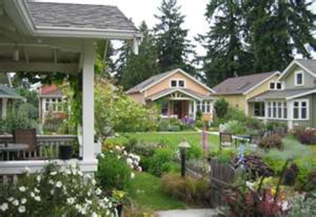 View of the front yards in a pocket neighborhood.