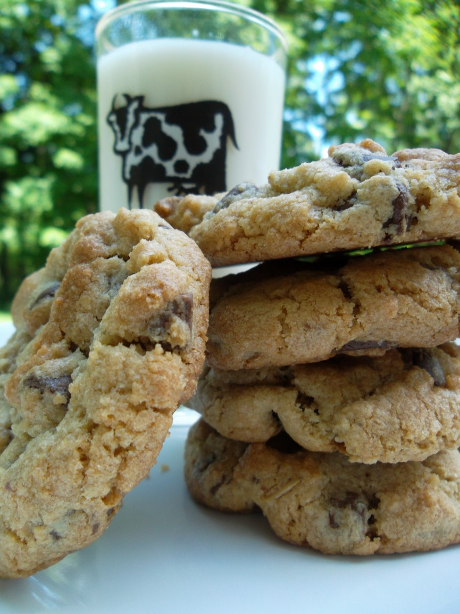 Best Chocolate Chip Cookie Recipe: The Mrs. Fields Cookies Hoax