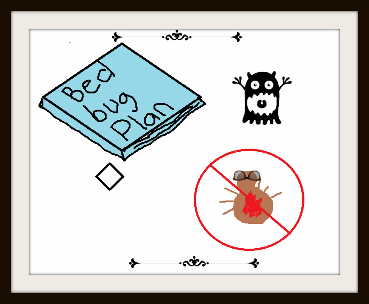 Bed Bug Removal Checklist Outline