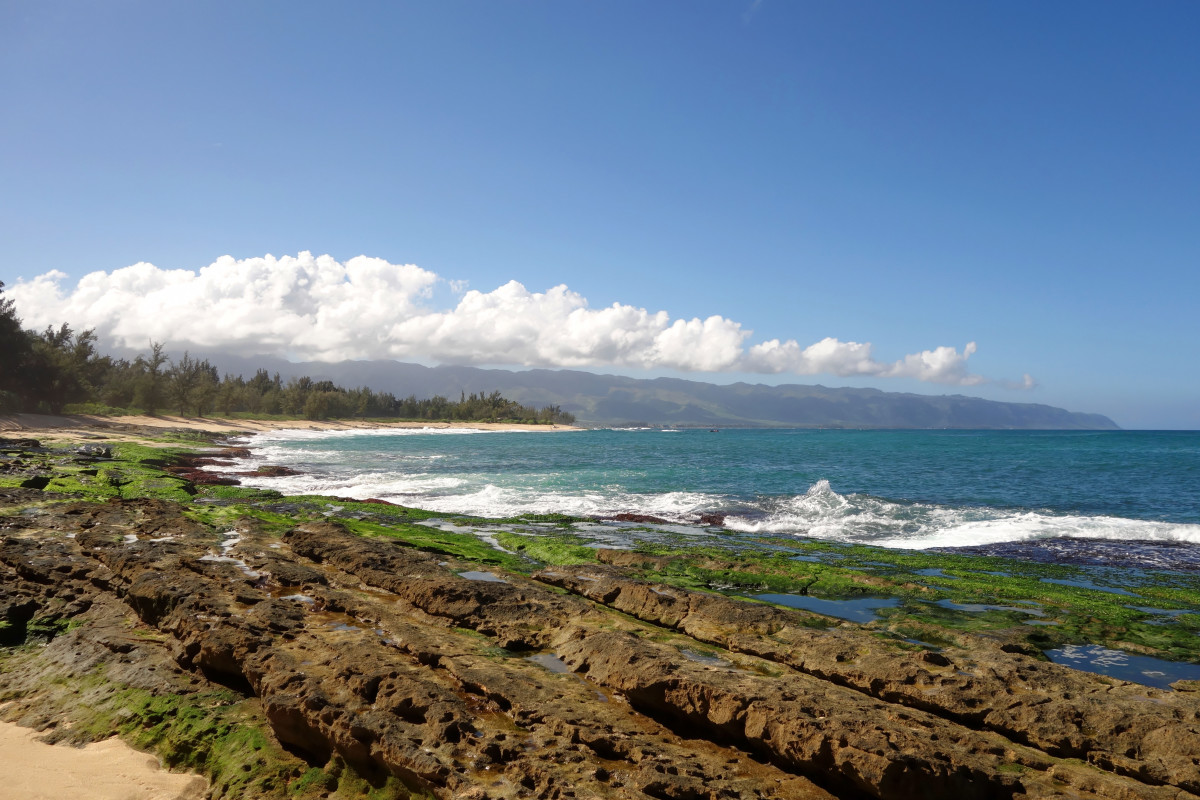 The North Shore of O'ahu will take your breath away.