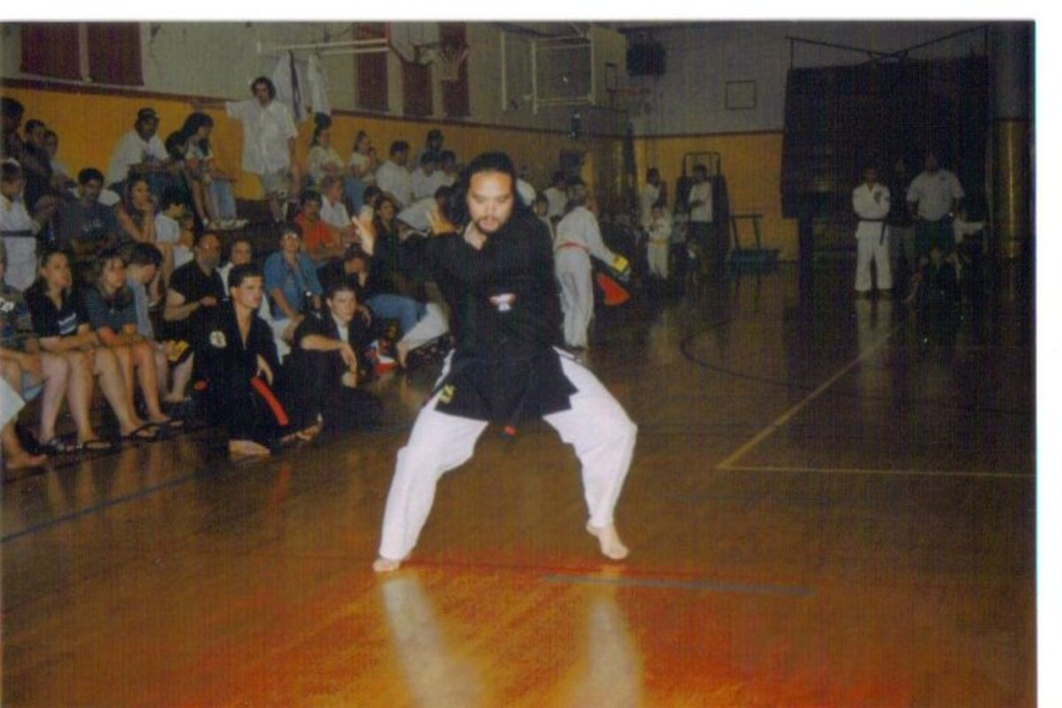Kenpo uses both circular and linear movement along with continuity of motion, using fluidity to execute continuious strikes and defensive moves.