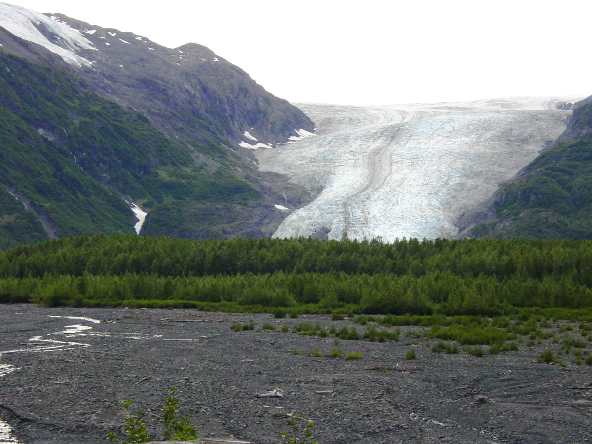 Exit Glacier from Exit Glacier Road.