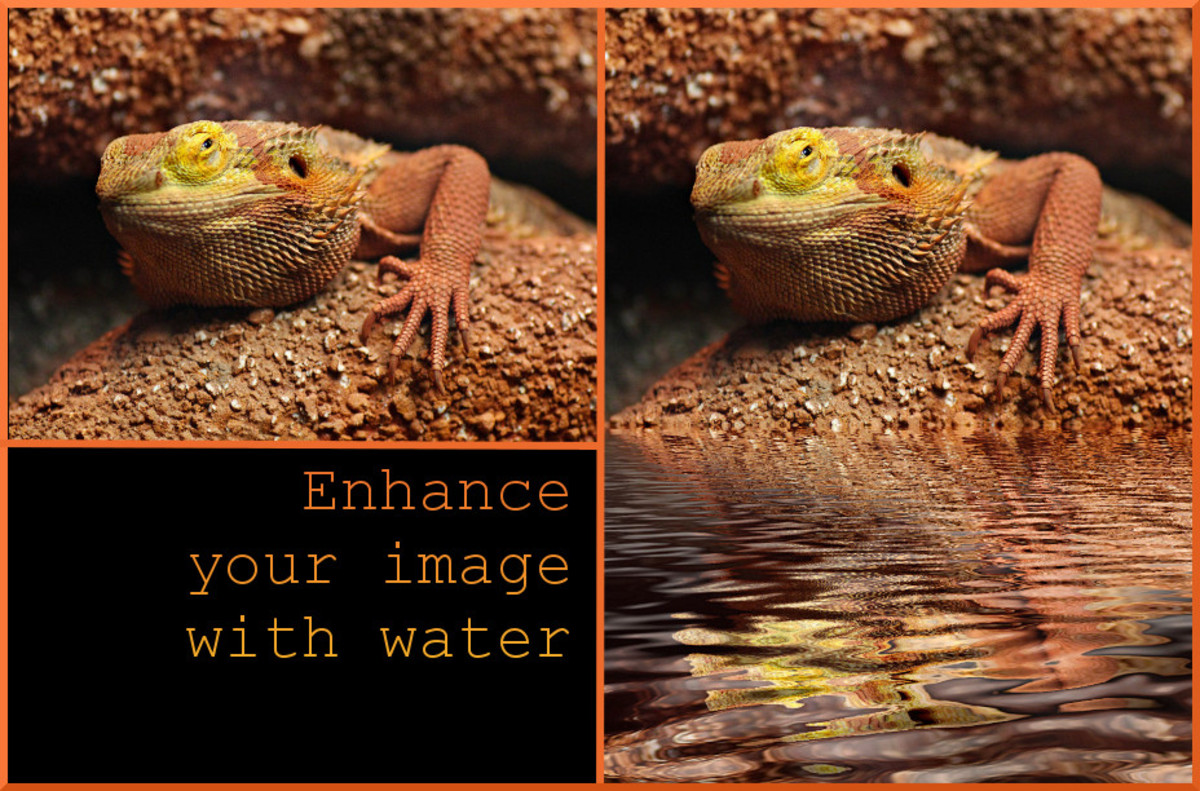 How to Add Water Reflection to an Image in GIMP