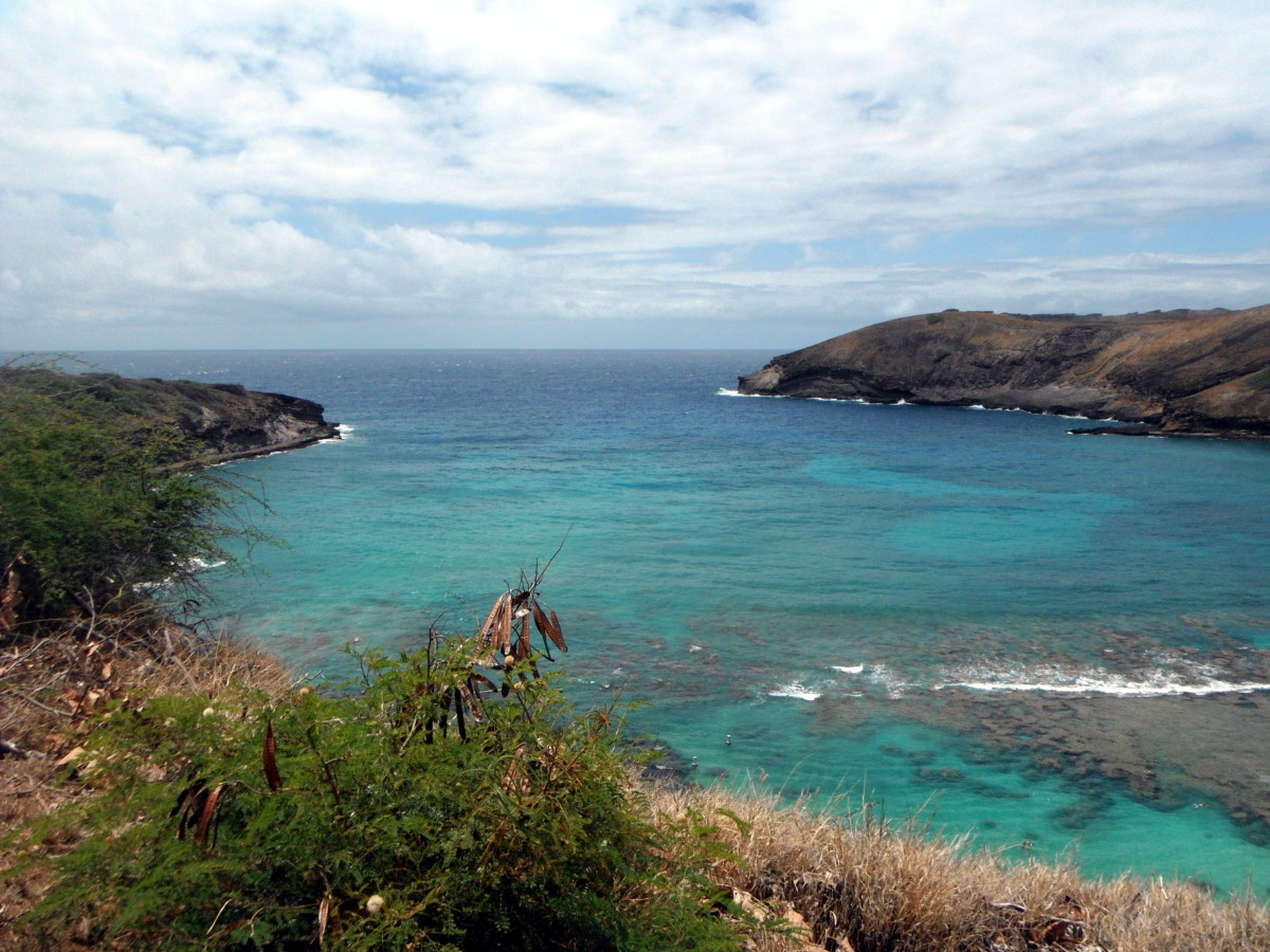 Hanauma Bay Nature Preserve: Best Snorkeling on Oahu, Hawaii
