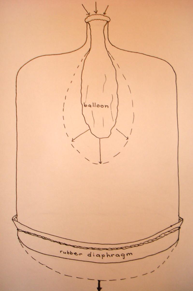 Bell jar diagram