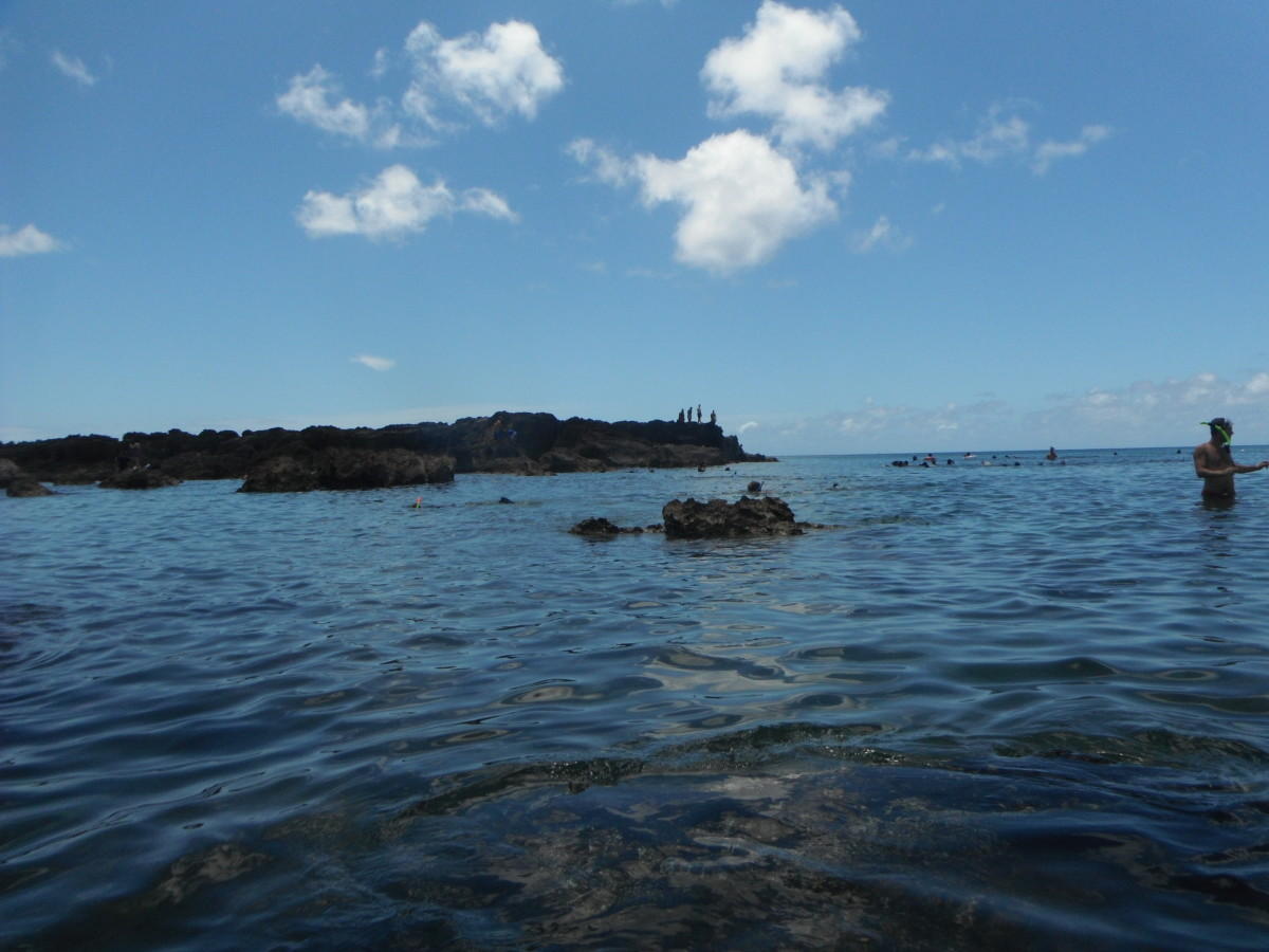 Best Places to Snorkel on Oahu, Hawaii — Shark's Cove