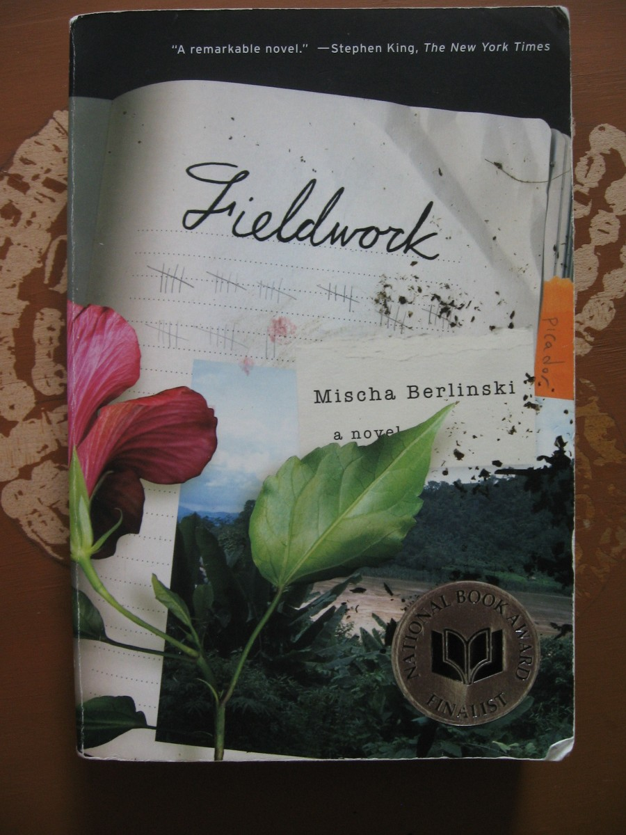 "A Book Review - ""Fieldwork"" by Mischa Berlinski"