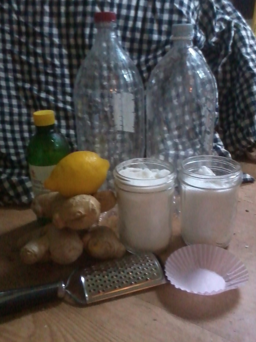 How to Make Ginger Beer (My Tried-and-True Home-Brew Recipe)