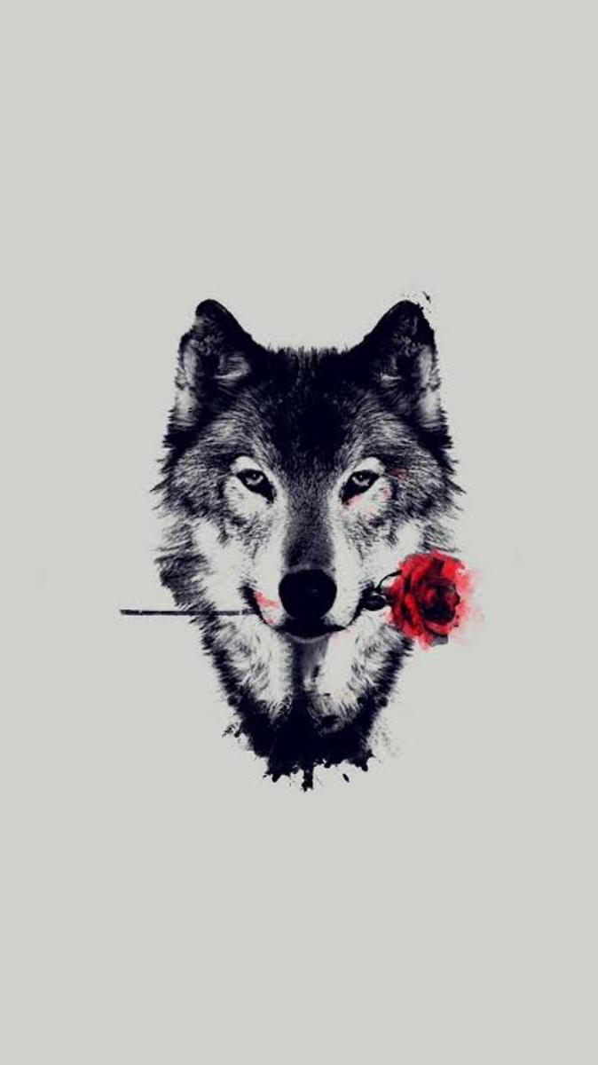 Lone Wolf (a mysterious disorder)