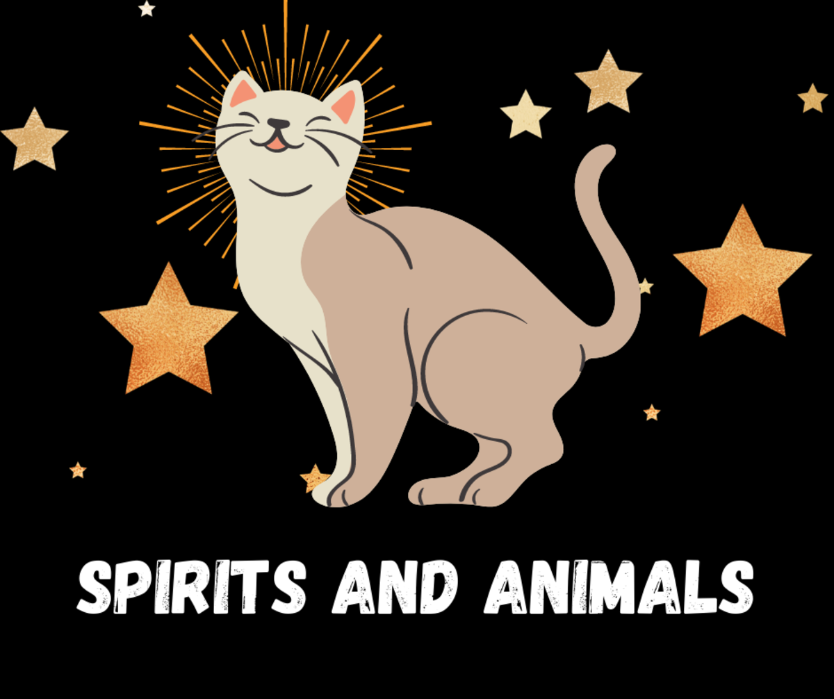 Read on to learn all about spirits and animals!
