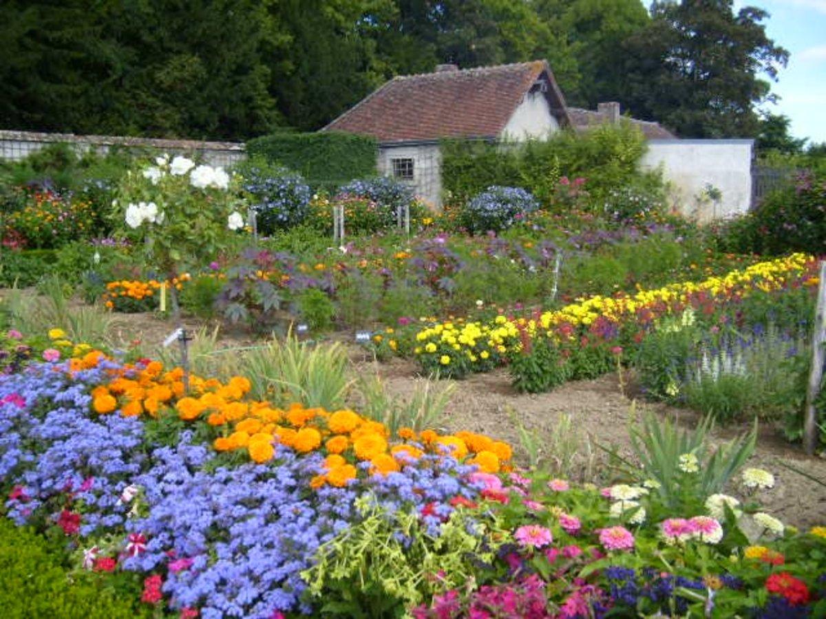 Garden Arrangements garden design: garden design with green flowers for gardens and