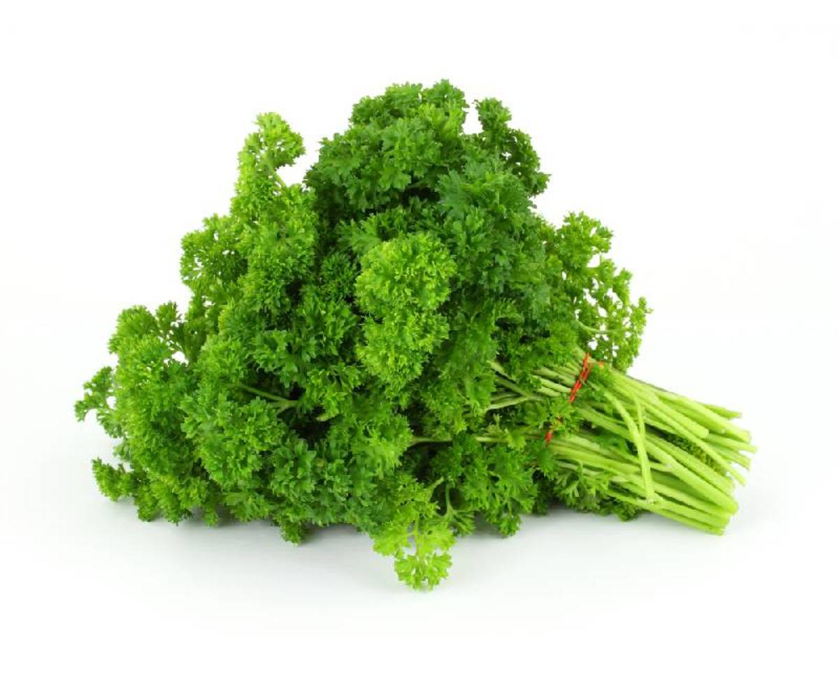 10 Health Benefits of Parsley
