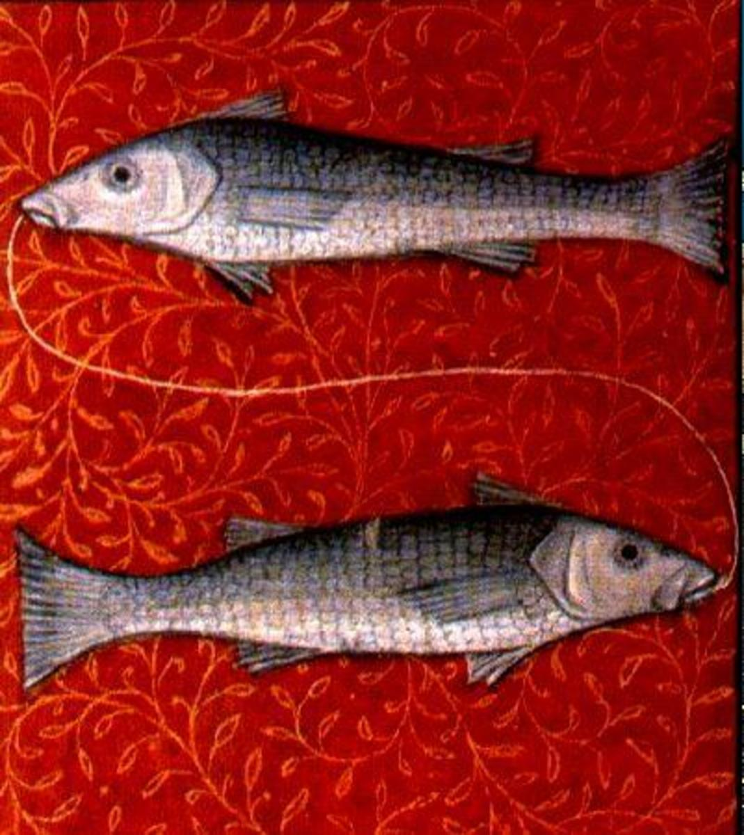 Pisces is represented by two fish.