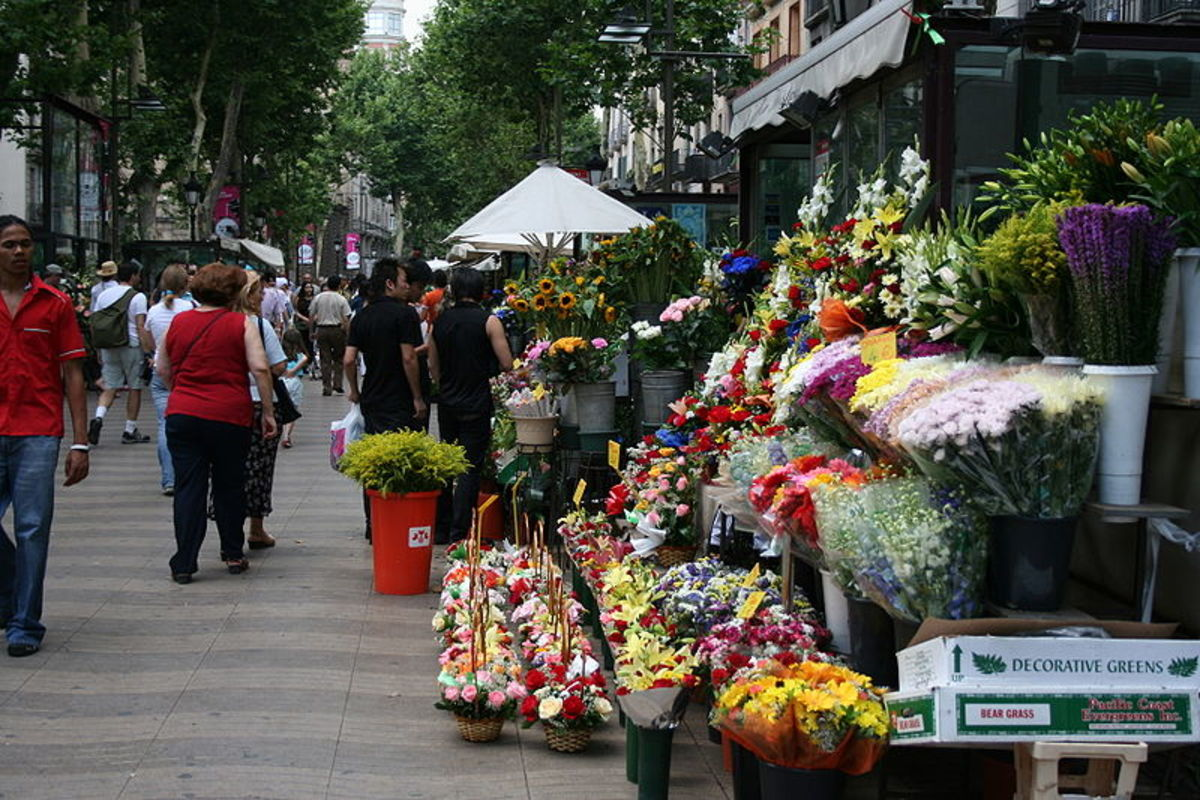 Wonderful flowers sold on the streets in Las Ramblas.