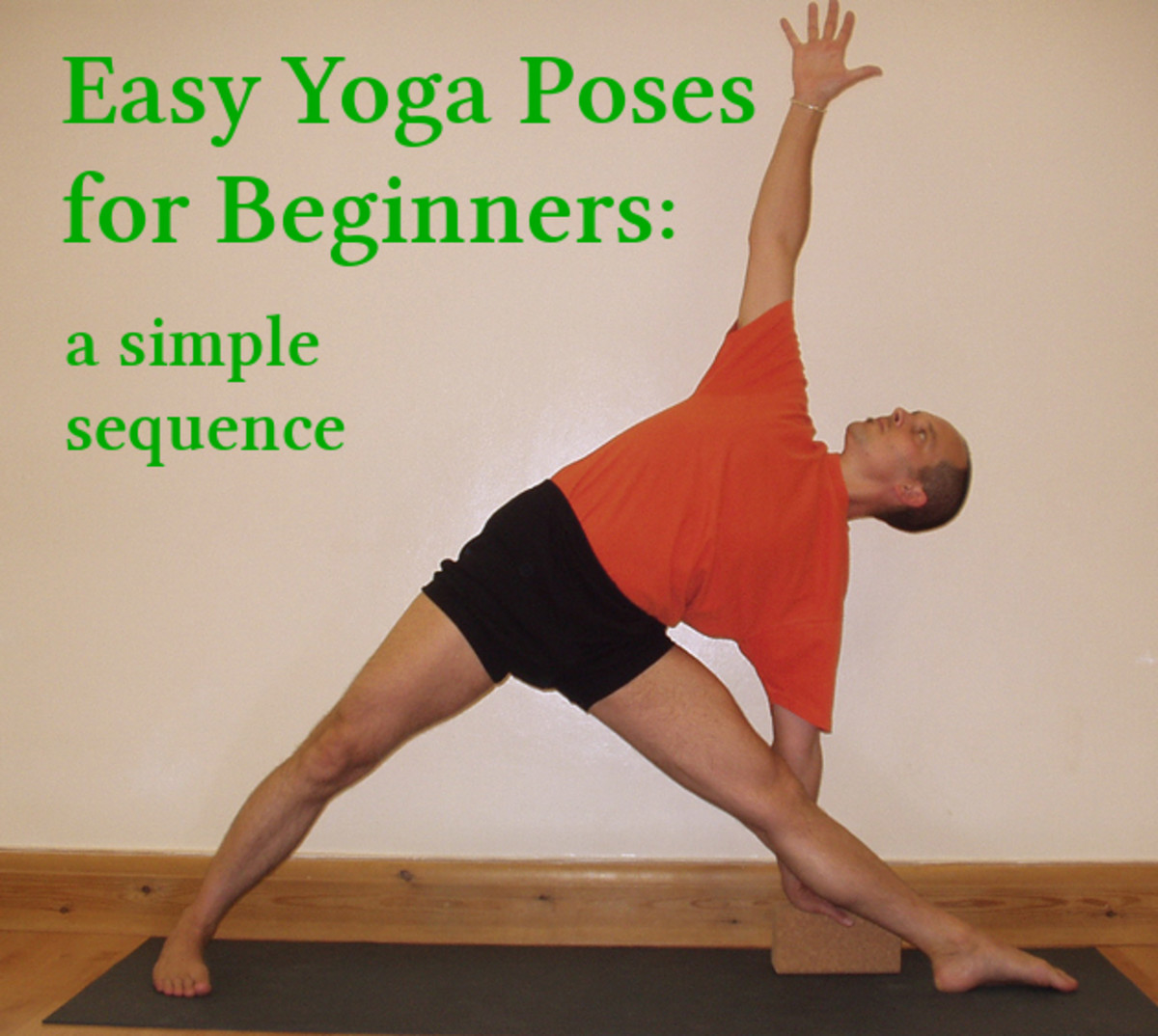 Easy Yoga Poses for Beginners and Home Practice