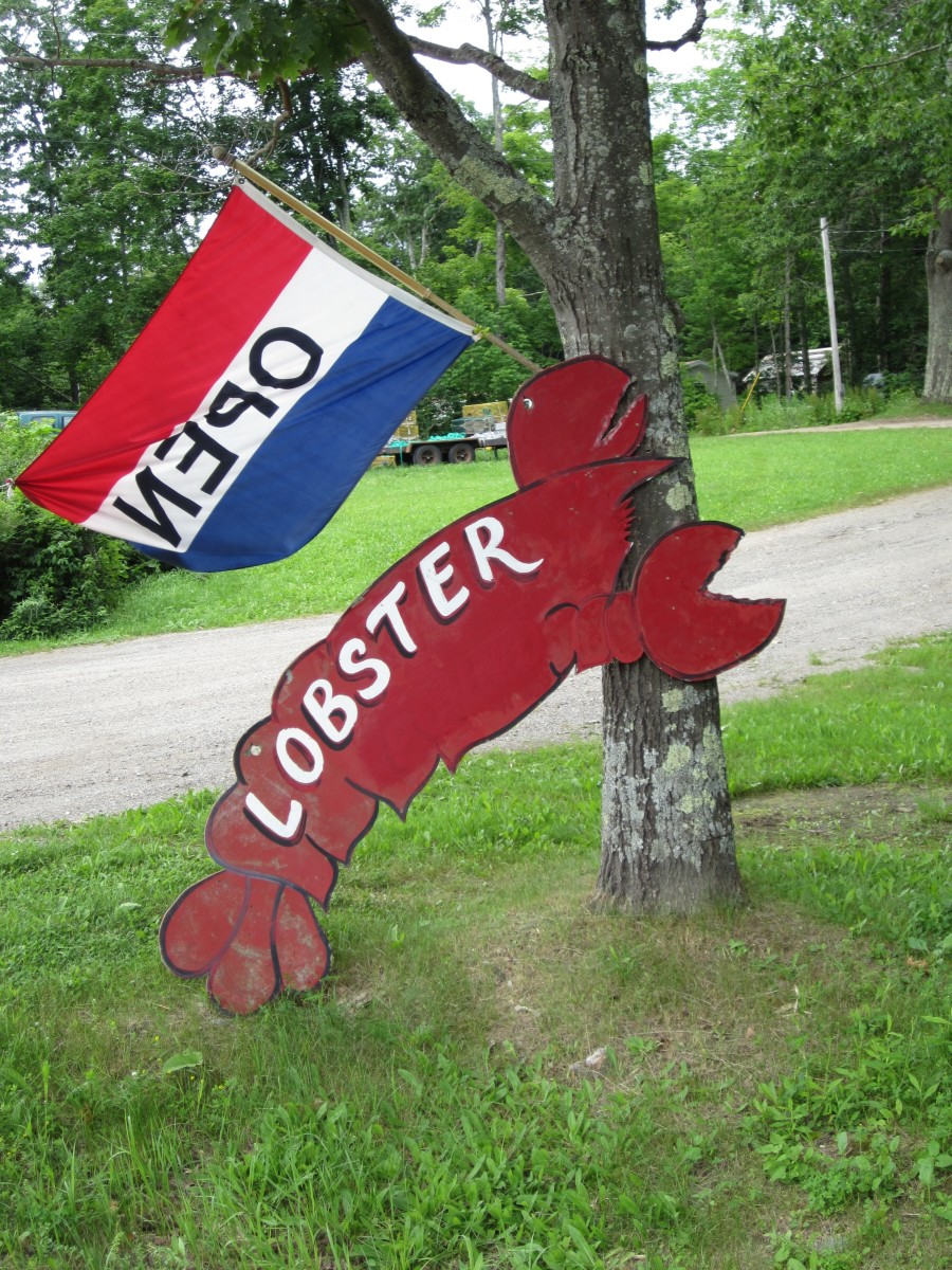 Roadside sign and flag, Pelican Seafood, Bucksport, ME
