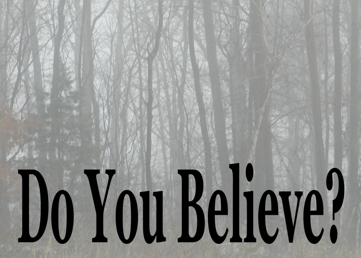 Are you a skeptic or a believer? How to do you compare to other people when it comes to your paranormal beliefs? Take the Paranormal Survey and find out!