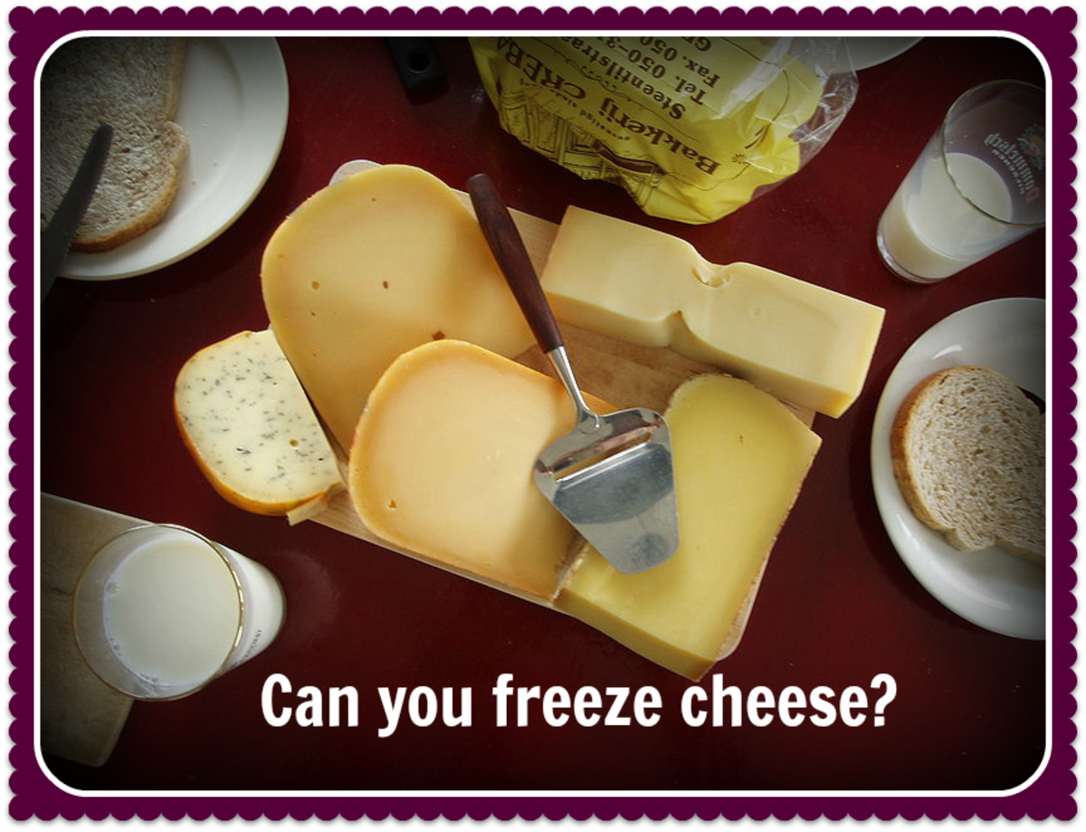 Can You Freeze Cheese? An Experiment
