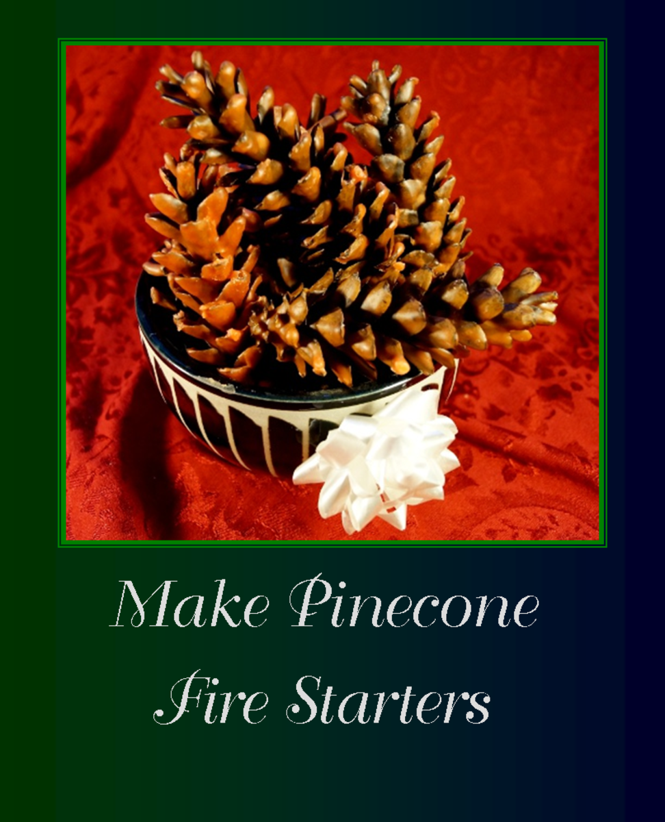 Learn how to make pinecone fire starters for your own use or to give as neat homemade gifts!