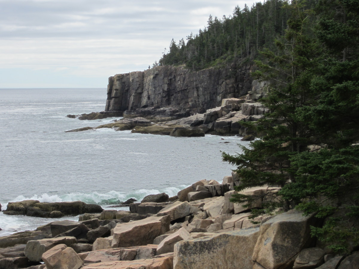 Rocky shore along Ocean Path with Otter Cliffs in the distance.  Acadia National Park, Bar Harbor, Maine