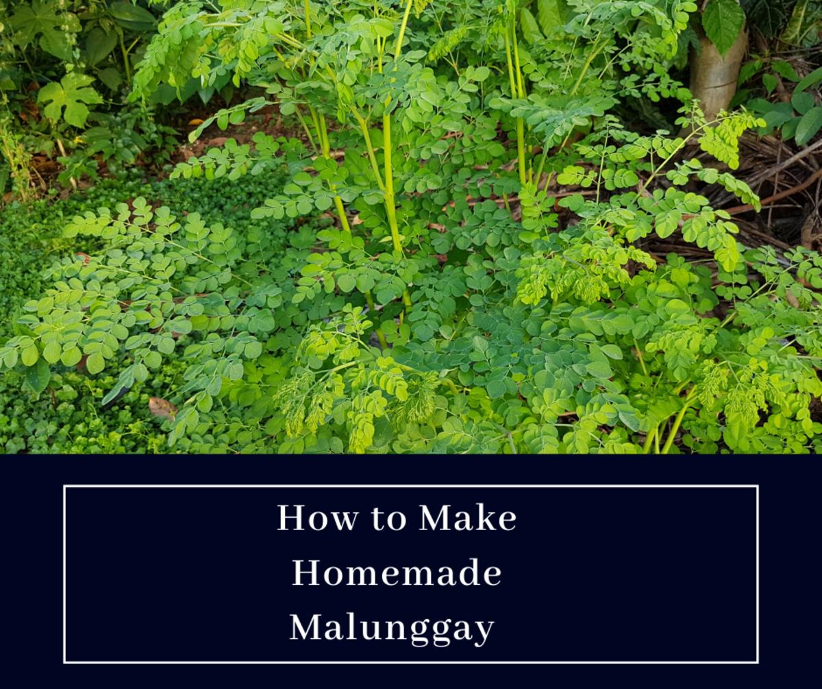 How to Make Homemade Malunggay (Moringa) Tea