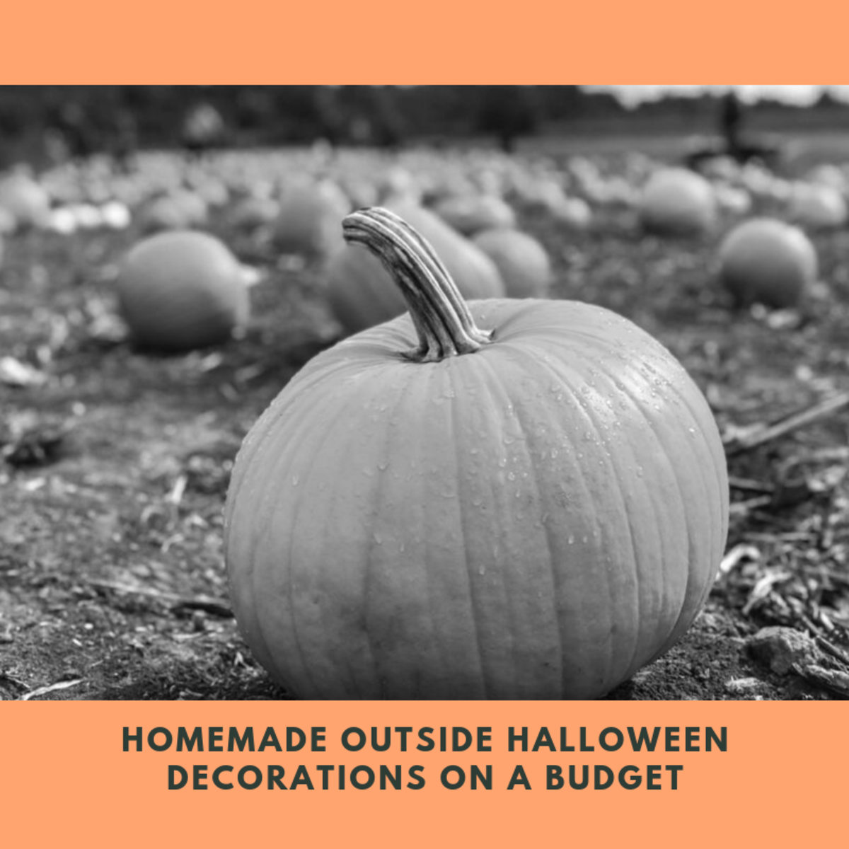 Homemade Outside Halloween Decorations on a Budget