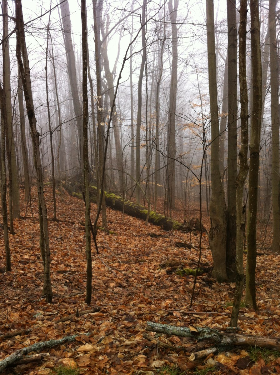 Autumn is a wonderful time of year for a hiking trip.