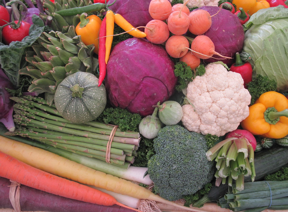 Vegetables for an Anti-Aging Diet