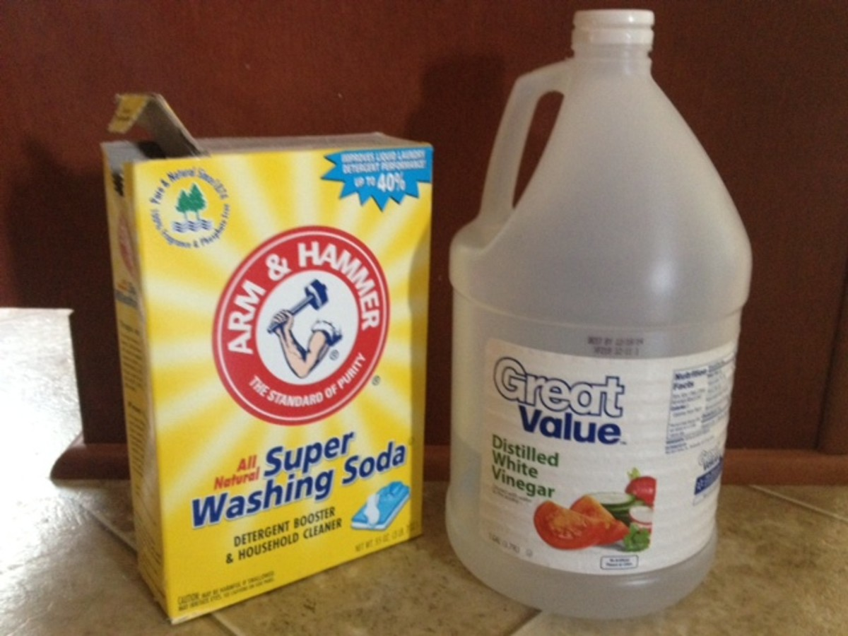 A Natural Alternative to Shampooing Your Carpet