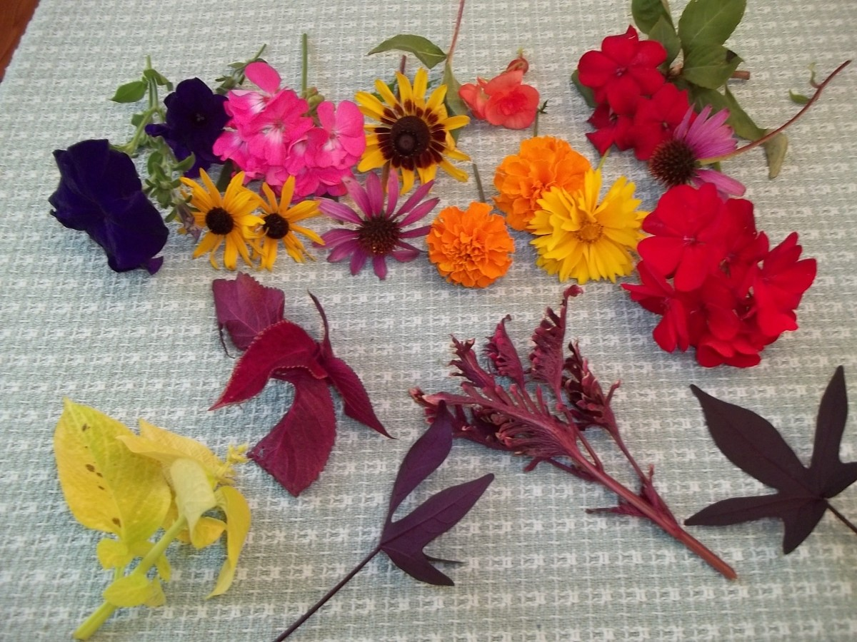 How To Flower Pound On Fabric Feltmagnet