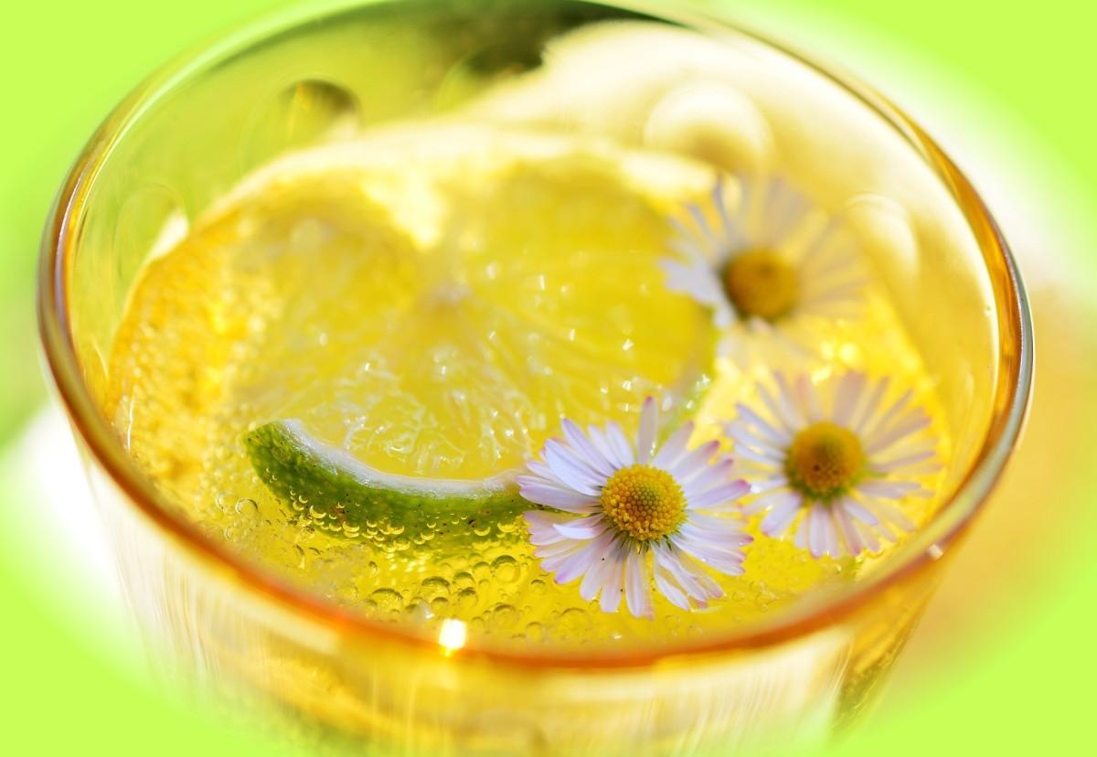 Easy Diet Limeade Slushy