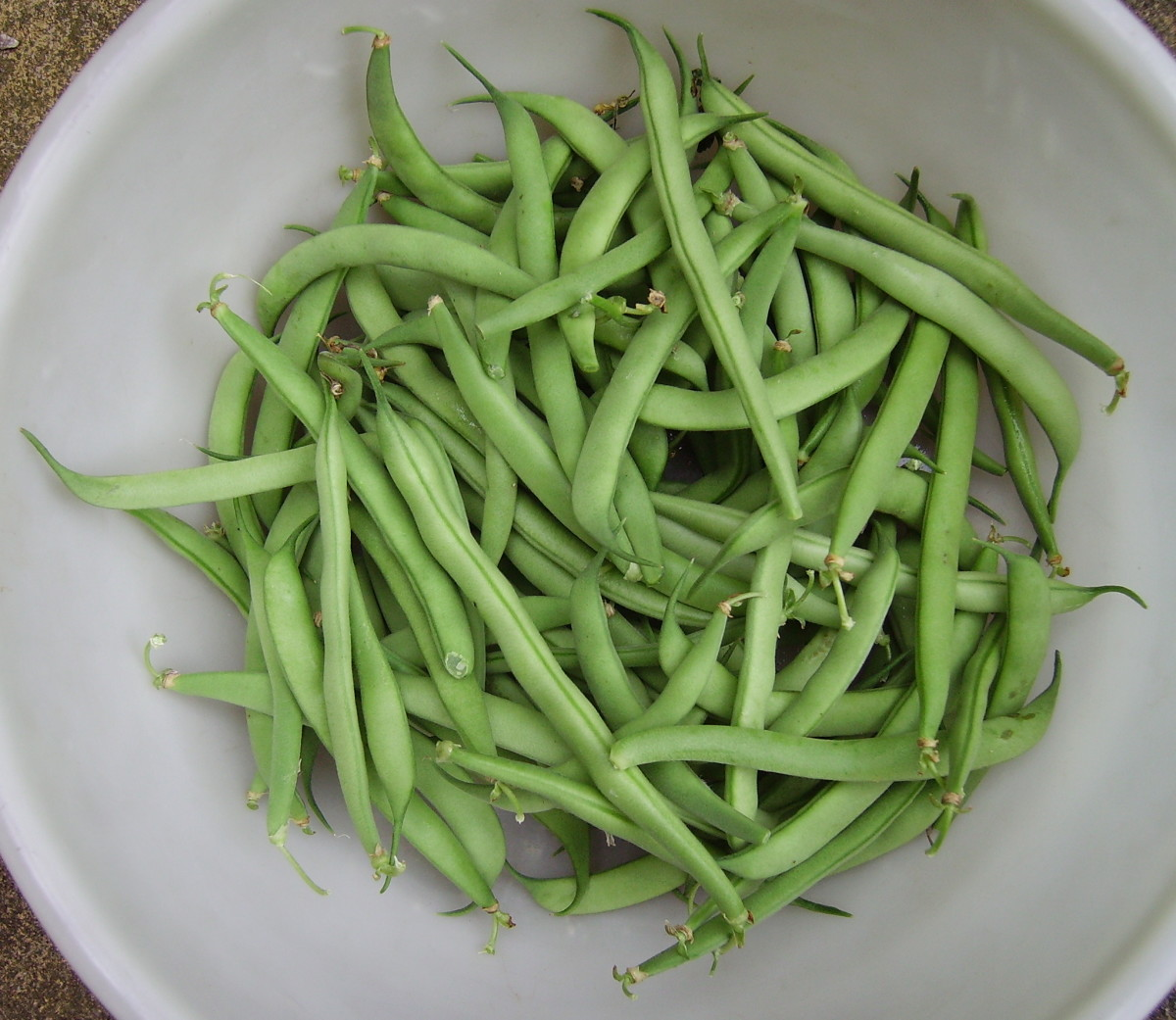 Green beans are a great addition to any meal. Serve hot or cold!