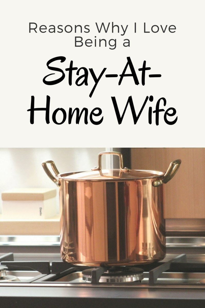 Housewives Without Children: Celebrating Life as a Stay-at-Home Wife ...