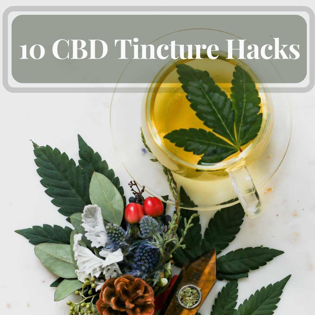 Top 10 CBD Tincture Hacks