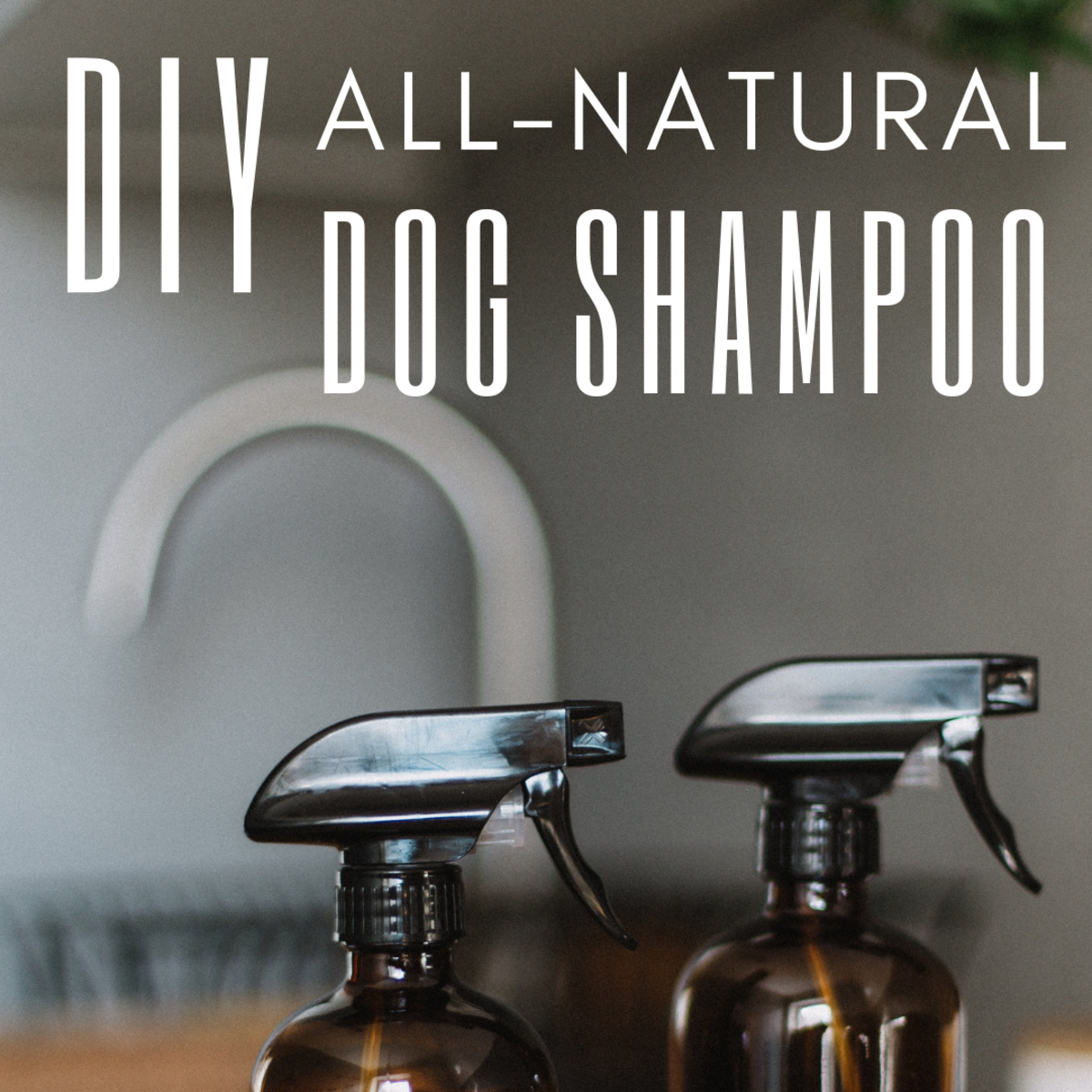 All-Natural Homemade Dog Shampoo Recipe