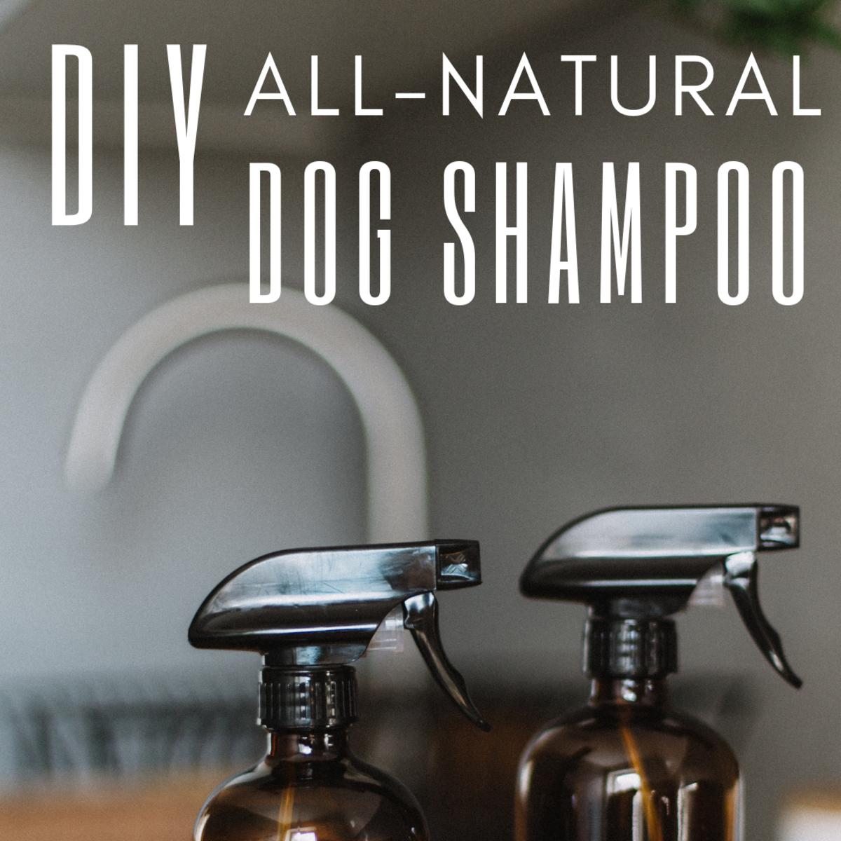 All-Natural Homemade Dog Shampoo Recipe