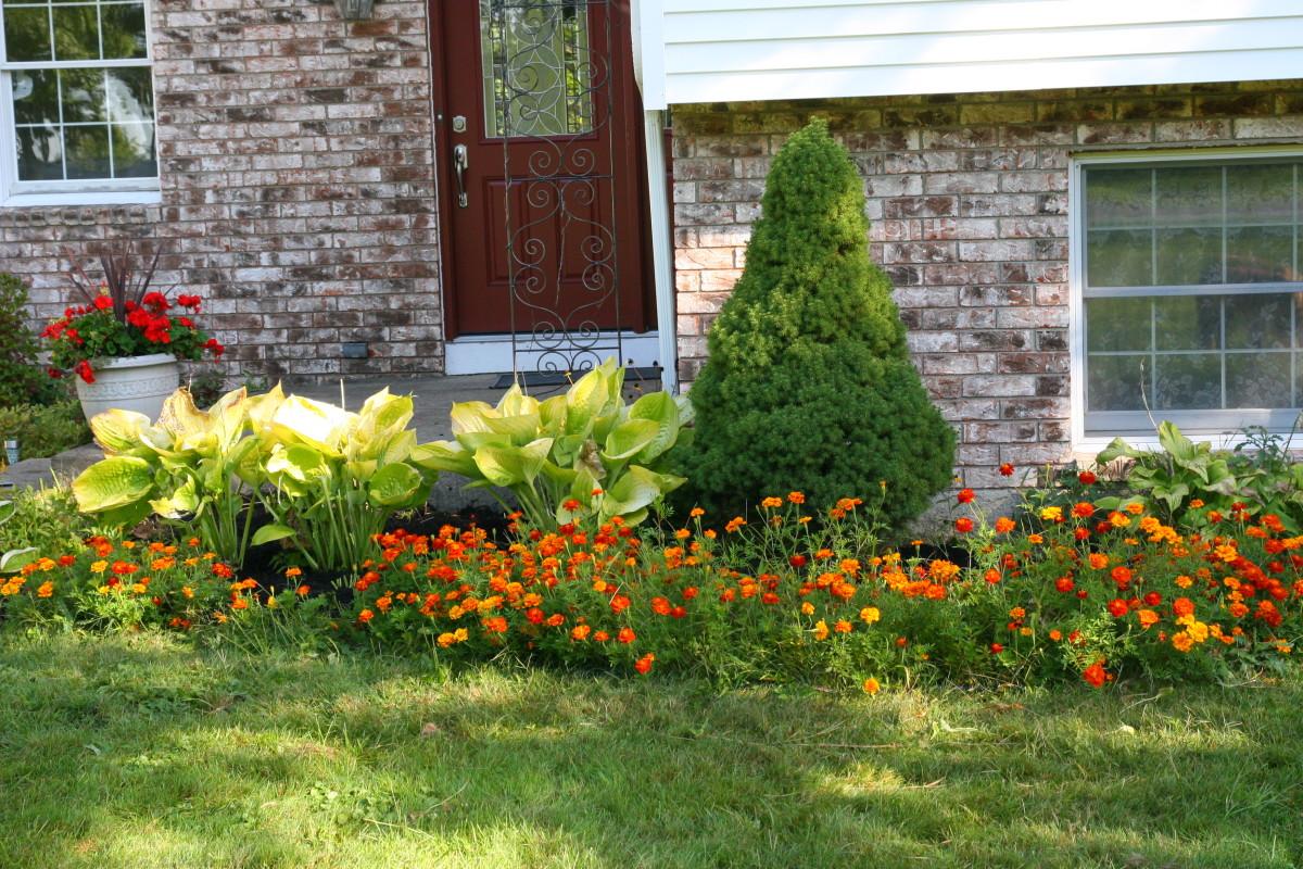 Fall garden tasks dengarden - Fall gardening tasks ...