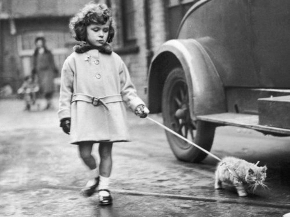 Little Girl Walking a Cat on a Leash—1950s
