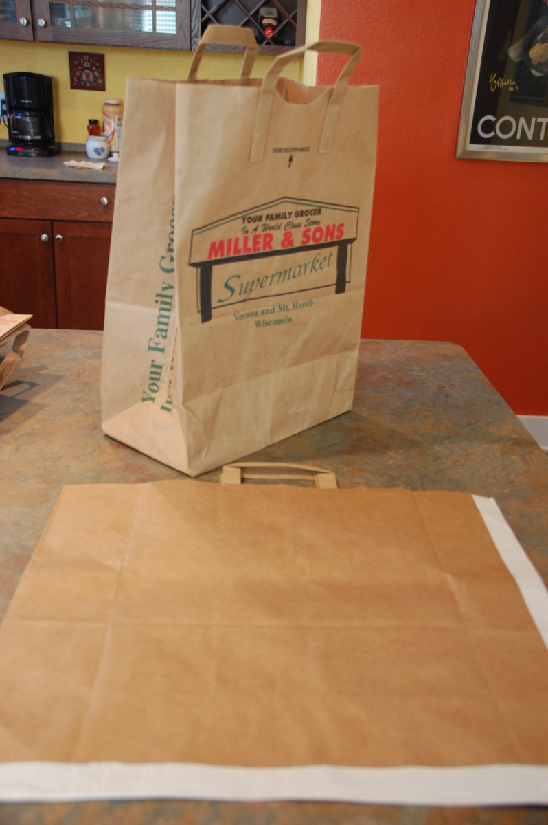 Paper bag art portfolios