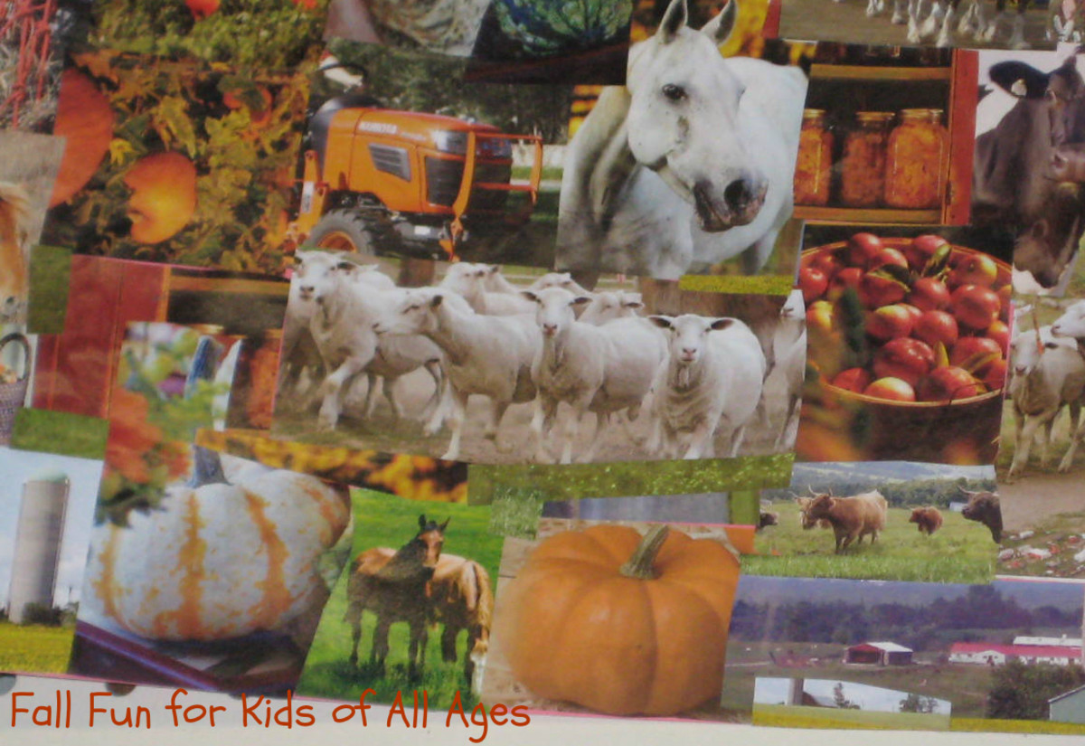 Fall collage made by my daughter.