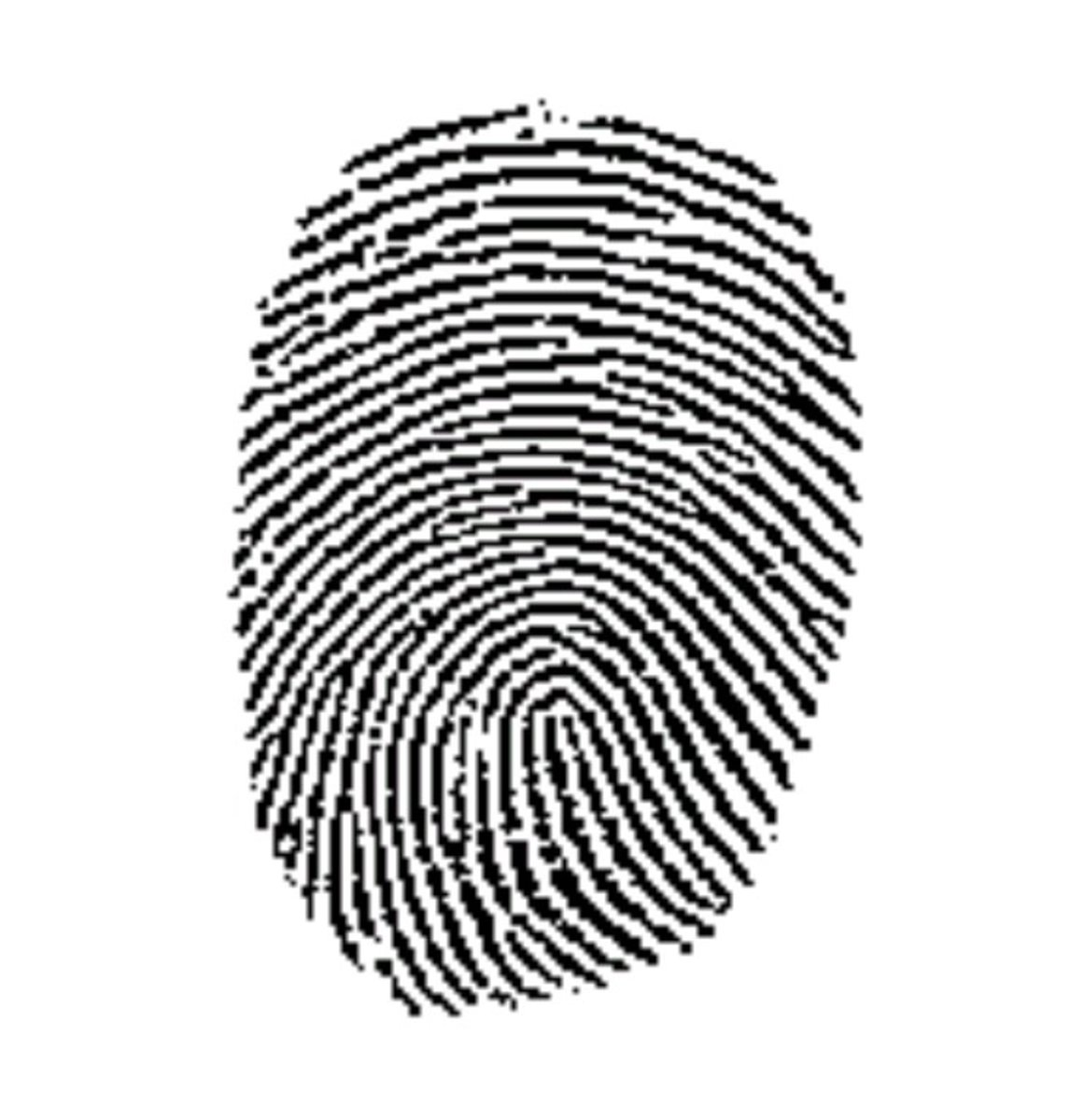 What does your fingerprint mean?