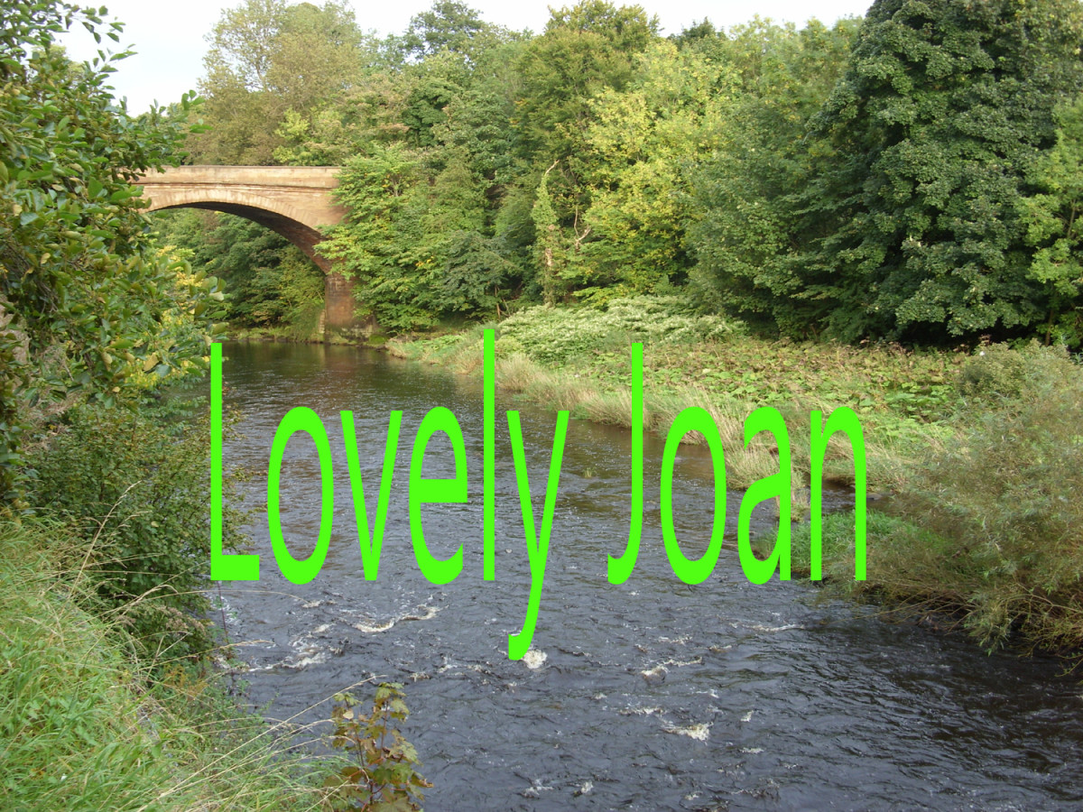 Lovely Joan - Folk Fingerstyle Guitar Arrangement in Tab, Notation and Audio