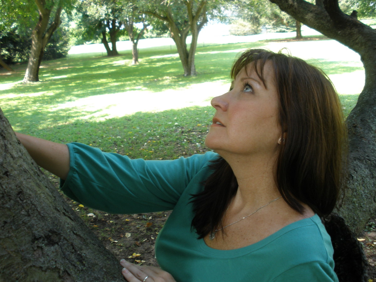 Touching a tree is a great way to ground energy and root yourself.