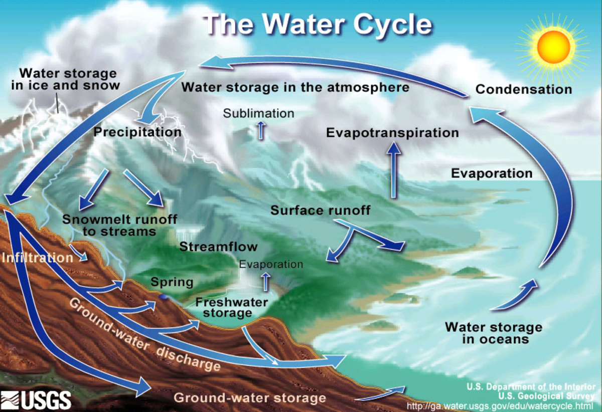 Following the blue arrows, you can see that water evaporates, rises as vapor, condenses into clouds, precipitates as rain and snow, flows down into lakes, rivers, and streams or absorbs into the ground, heading for the ocean to start the cycle again.