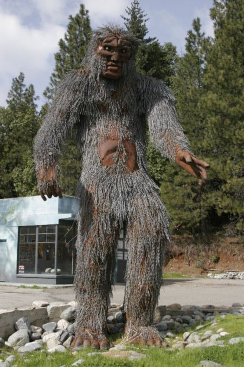 Bigfoot Facts and Theories for Skeptics
